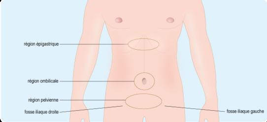 Schéma représentant les différentes zones de l'abdomen: la région épigastrique; la région ombilicale; la région pelvienne; et la paire de fosses iliaques (cf. description détaillée ci-après)