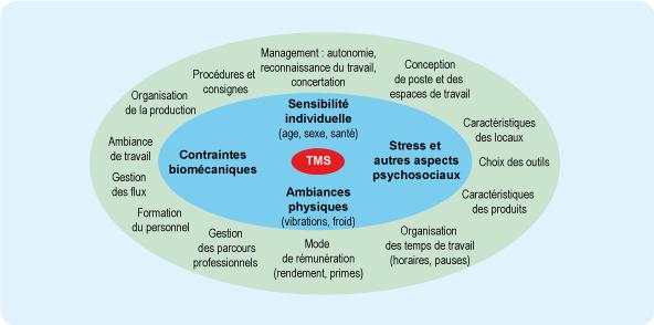 Schéma de 4 facteurs individuels favorisant les troubles musculosquelettiques (cf. description détaillée ci-après)