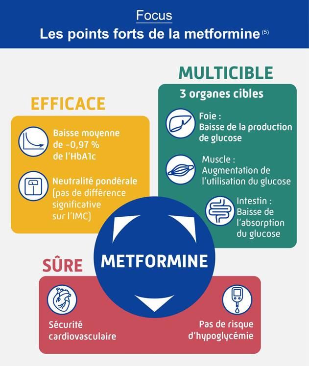 Focus en image sur les 3 points forts de la metformine (description complète ci-après)