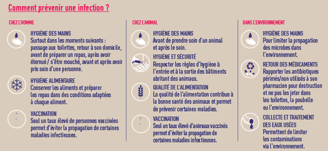 infographie_prevenir_infection_646px.png