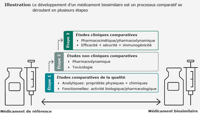 Etape de développement d'un médicament biosimilaire et de référence