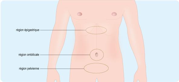Schéma anatomique de l'abdomen, composé de la région épigastrique, de la région ombilicale, de la région pelvienne et de la paire de fosses iliaques (cf. description détaillée ci-après)