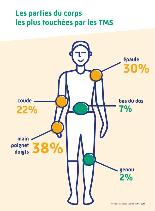 Infographie indiquant la part des troubles musculosquelettiques sur le corps