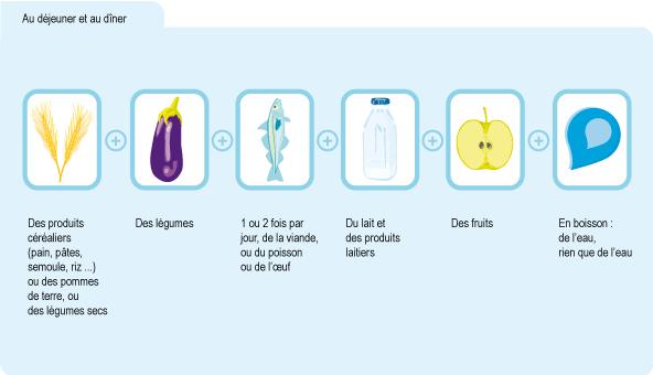 Schéma : types d'aliments recommandés au déjeuner et au dîner